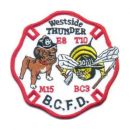 baltimore-city-fd-westside-thunder-e8-t10-m15-bc3-gestickt-stoff-umkettelt